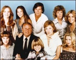 La famiglia Bradford serie televisiva completa anni 70